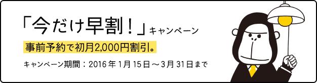 eneos-campaign